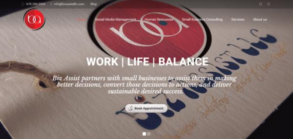 Biz Assist LLC